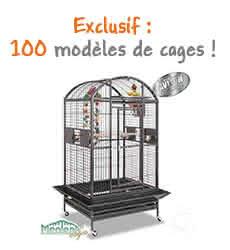 100 modèles de cages